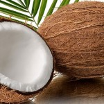 US Investors To Use Guyana Coconut Water In Energy Drink