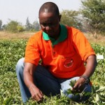 Africa's Farmers Seek Private Money