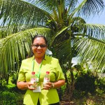 Climate Change A Mixed Blessing For Coconut Farmers In The Caribbean