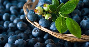 Boost Your Nutrition This Winter With Blueberries