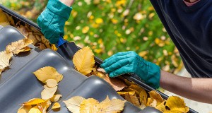 A New Home Owner's Guide To Maintenance This Season