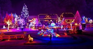 Five Illuminating Facts About Holiday Lights