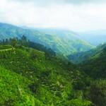 Jamaica's Blue and John Crow Mountains Inscribed To UNESCO's Prestigious World Heritage List