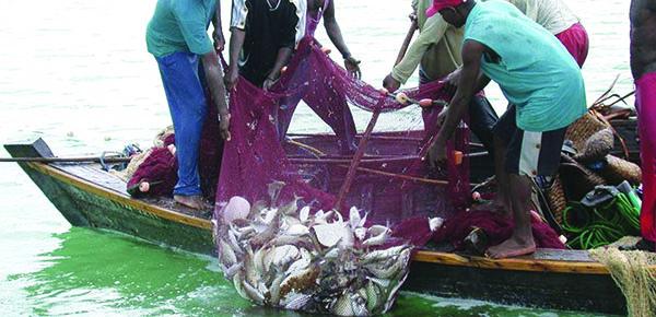 Climate Change Shrinking Uganda's Lakes And Fish