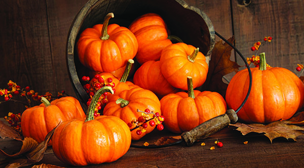 Chef Selwyn's Recipes: The Pumpkin — A Super Food Getting Its Just Desserts