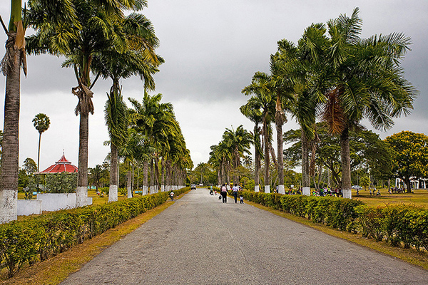 The main road that runs through the Gardens. Photo courtesy of the Guyana City Guide.