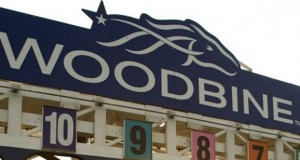 Over $20 Million Up For Grabs On Stakes Schedule At Woodbine Racetrack