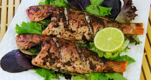 Simple Oven Jerk Fish