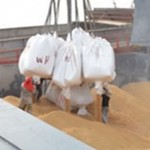 Jamaican Authorities Seize Rice Shipment From Suriname