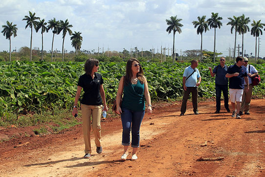 Members of the U.S. Agriculture Coalition for Cuba, supported by more than 30 agricultural organisations and companies, visit the Primero de Mayo Cooperative in Güira de Melena, in the western Cuban province of Artemisa. Credit: Jorge Luis Baños/IPS.