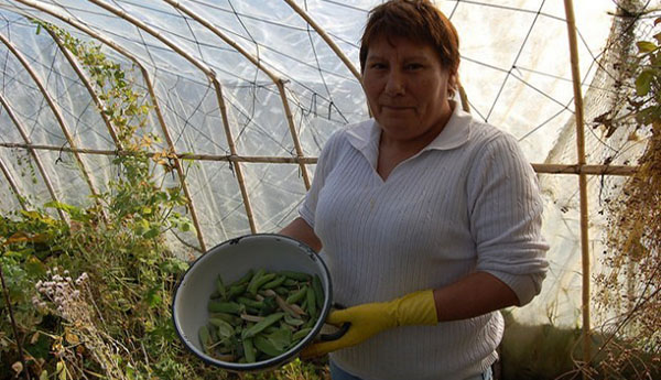 Land Tenure Still A Challenge For Women In Latin America