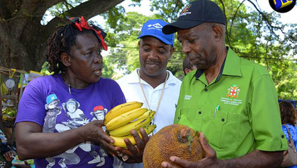Jamaica's Agriculture Ministry To Restart Farmers' Markets Across Island