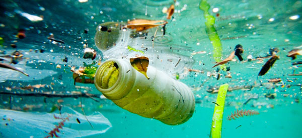 Biodegradable plastics are not the answer to reducing marine litter. Photo credit: UNEP.