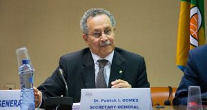 Towards A Global Role For The Africa Caribbean Pacific Group Of States?