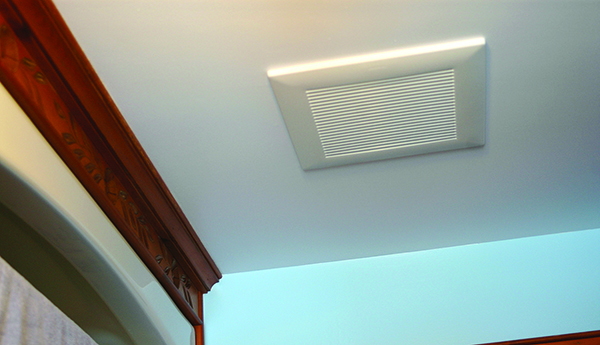 How To Get Rid Of Bathroom Ceiling Mould