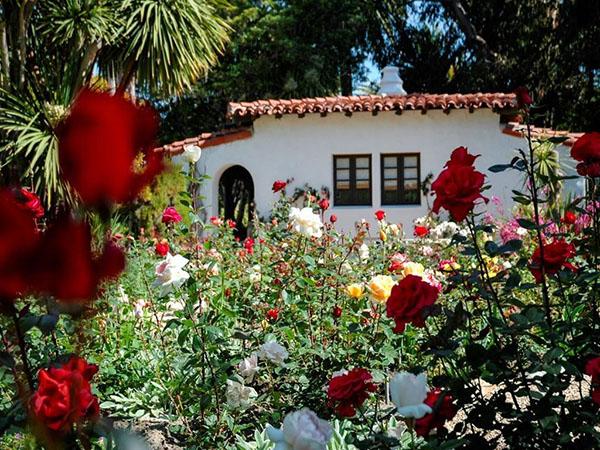 Nixon -- garden