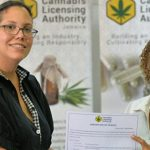 Chair of the Cannabis Licensing Authority of Jamaica, Hyacinth Lightbourne (left), presents Director and Secretary, Everyting Oily Labs, Claudine Liu, with a cannabis licence, at a press conference on Wednesday (October 18), at the offices of the Ministry of Industry, Commerce, Agriculture and Fisheries in New Kingston. Photo credit: Yhomo Hutchinson/JIS.