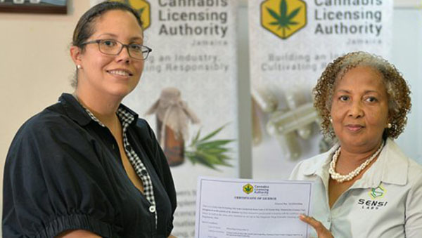 Jamaica Issues First Two Cannabis Licences