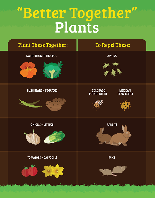 better-together-plants