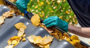 Fall Maintenance Tips For In And Around Your Home