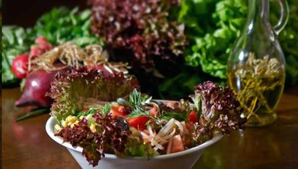 Autumn Is The Perfect Time To Grow Great Gourmet Garden Salads