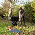 teenage kids help with clearing up leaves in back yard in autumn