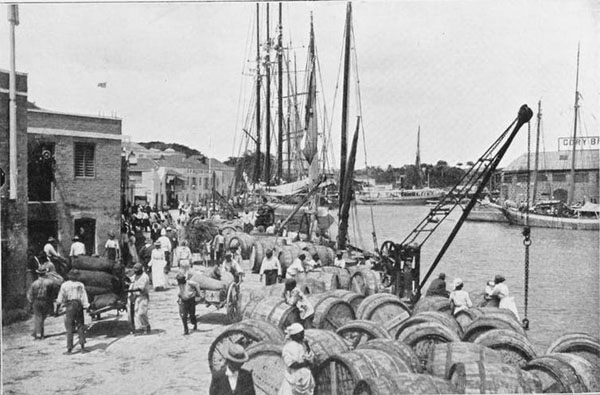 Shipping sugar, Bridgetown, Barbados, 1909. Photo credit: Allister Macmillan, Schomburg Center for Research in Black Culture, Jean Blackwell Hutson Research and Reference Division.