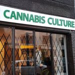 One of the six Cannabis Culture shops opened by Marc Emery in Montreal, Quebec, in December 2016, leading to his arrest. Photo by Exile on Ontario St from Montreal, Canada - Cannabis Culture Recreative Marijuana Shop in Montreal, CC BY-SA 2.0, https://commons.wikimedia.org/w/index.php?curid=54177719.