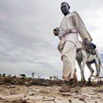 Farmers planting during a rainy season in Dali, North Darfur, Sudan. Photo credit: Albert Farran/UN.