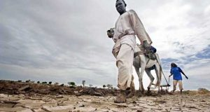Global Warming: Severe Consequences For Africa