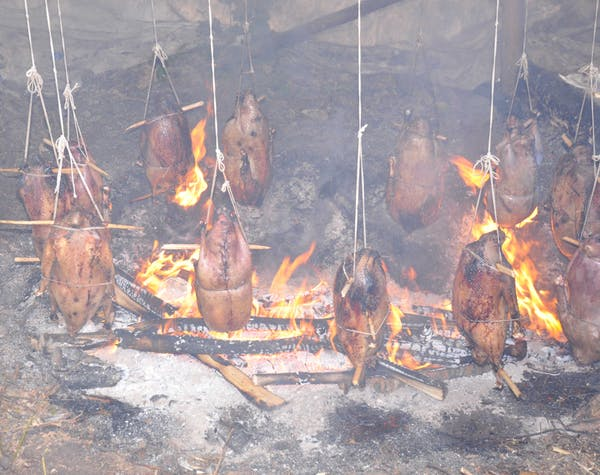 Members of the James Bay Cree of northern Québec roast geese on a fire. Photo credit: David Dyck Fehderau.