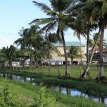 Guyana's Roadmap To Becoming A Green State