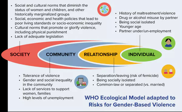 This chart explains the different factors that impact gender-based violence. From Creating Safety for Survivors of Gender-Based Violence: Trauma- and Violence-Informed Care. Graphic by J. MacGregor.