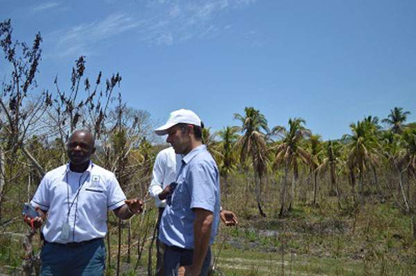 Parish Agriculture Manager Delroy Luke (left) and the CTA's Bertil Videt. Photo credit: CMC.