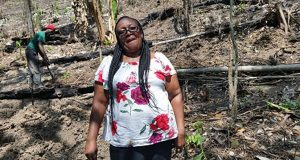 Rural Farmers In Jamaica Turn To Technology To Manage Climate Change