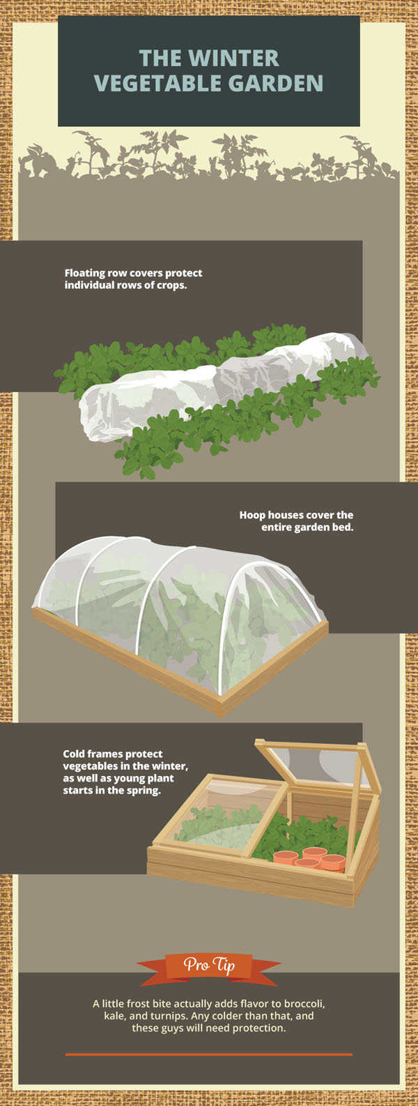 Preparing Your Garden For Winter -- Story image 3