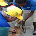 Pan American Health Organisation Launches Rabies Elimination Program In Haiti