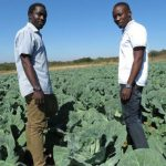 Does Africa's Food Security Really Lie With Young Farmers?