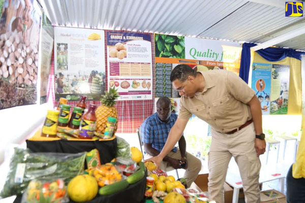 Prime Minister, Andrew Holness, looks at produce on display at the Show. Photo credit: Garwin Davis/JIS.
