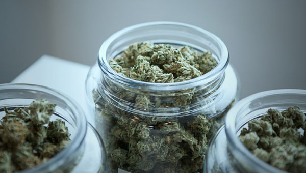 Is Cannabis An Effective Treatment For Crohn's Disease?