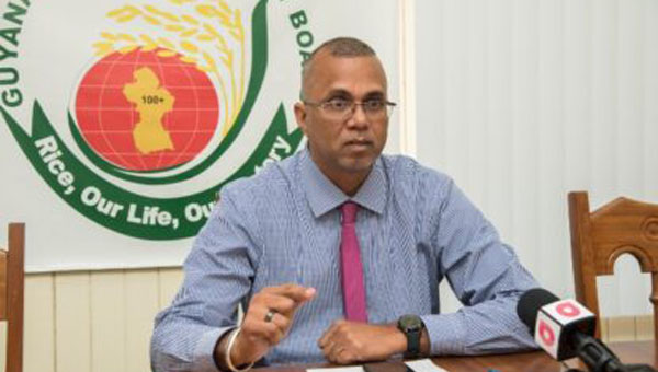 Guyana Rice Producers Increase Exports With First Crop