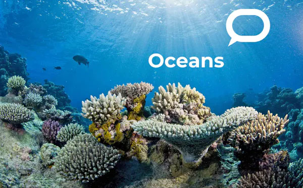 This story is part of Oceans 21 Our series on the global ocean opened with five in depth profiles. Look out for new articles on the state of our oceans in the lead up to the UN's next climate conference, COP26. The series is brought to you by The Conversation's international network.