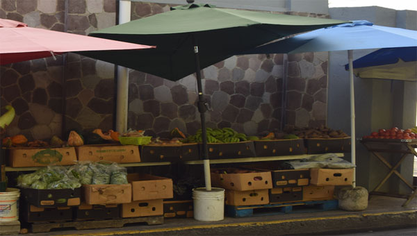 St. Kitts Government Addressing Street Vending Concerns In Capital