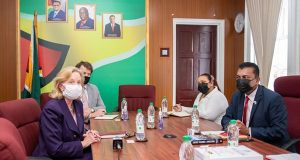 Guyana-US Business Relations Stronger Than Ever, Declares US Ambassador