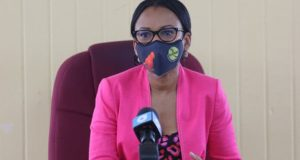 Guyana Government Intends To Revitalise Tourism; Public-Private Partnership Needed