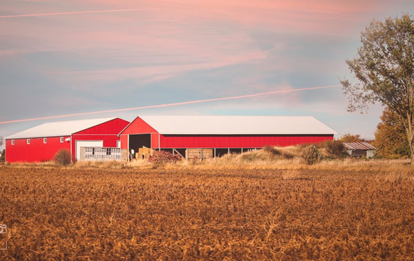 A farm in eastern Ontario. Photo credit: PhotosTheArt/Unsplash.