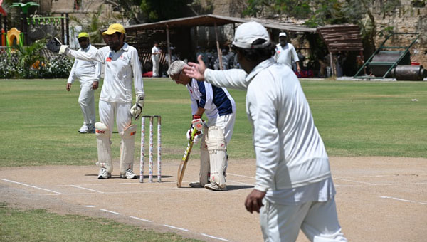Cricket Can Be A Powerful Instrument To Help Address Domestic Violence
