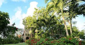 Antigua's Historical Gem: The Great House